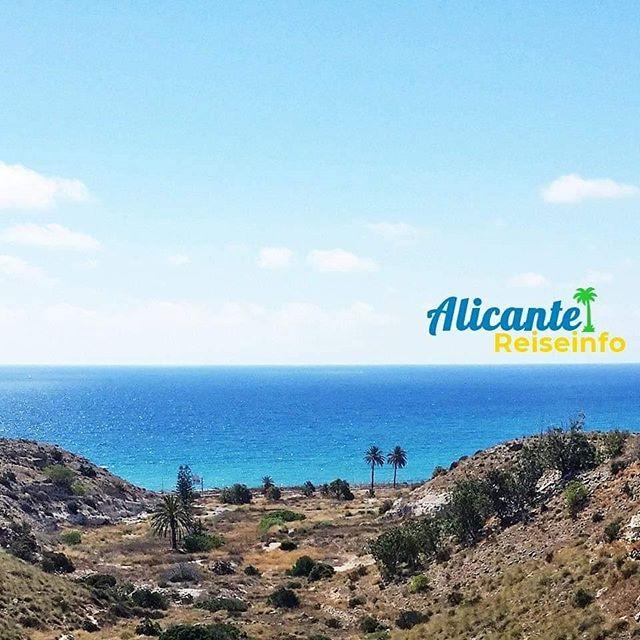 Meer, Palmen - passt. #iamdreaming #meer #küste #mediterran #costablanca #meerweh #vitaminsea #küstenliebe #urlaubsplanung