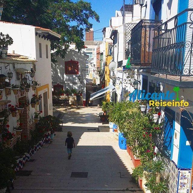 Spazieren im Barrio Santa Cruz, Altstadt von Alucante. Jede Menge Blumentöpfe und dazwischen ein kleiner Park. #alicante #alicantealtstadt #geranien #alicantegram #spanienliebe #costablanca