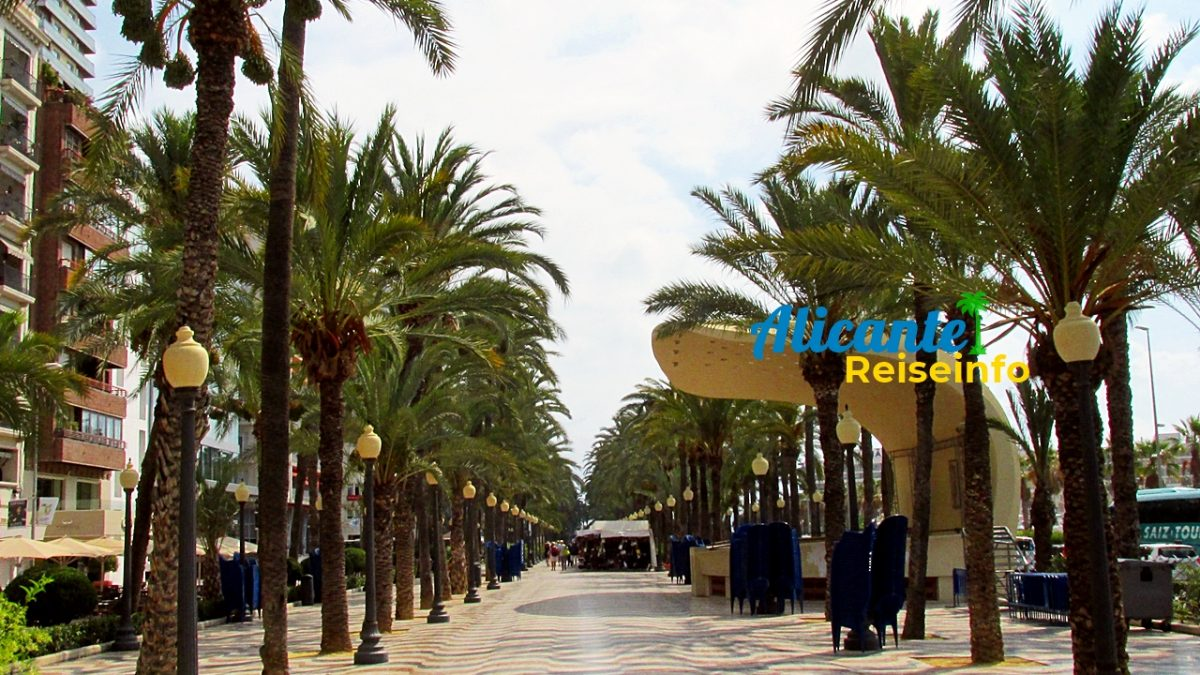 Drei Top-Sehenswürdigkeiten in Alicante (und warum man diese auf jeden Fall gesehen haben sollte)
